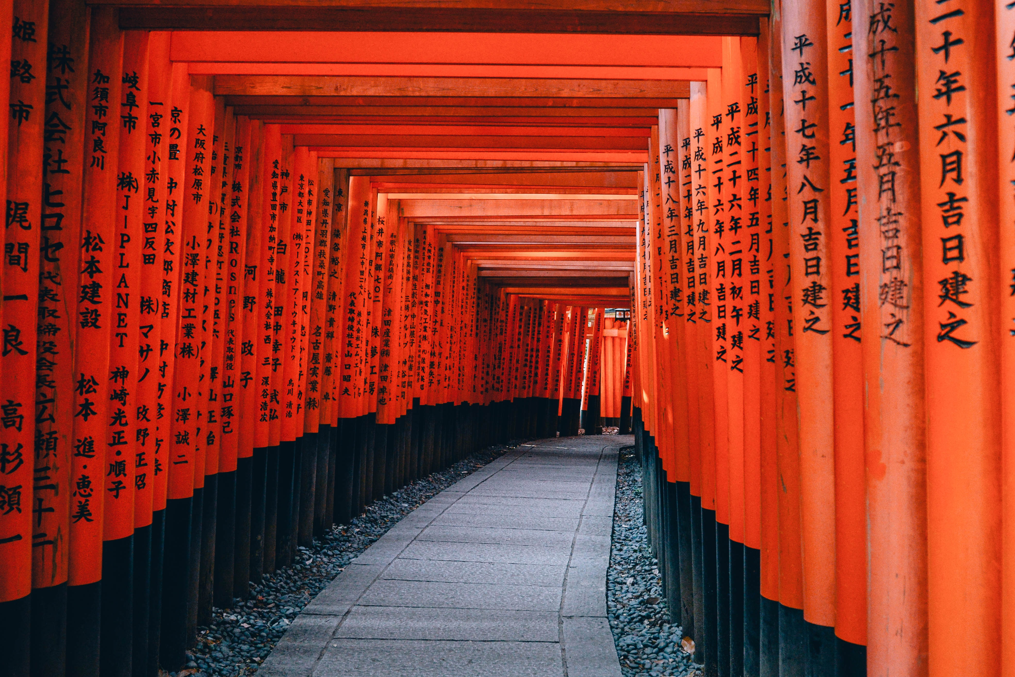 Three Fun and Family-Friendly Tours To Go On in Charming Kyoto | HalalGo.com